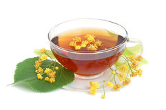 Tea with linden flowers Royalty Free Stock Photography