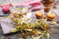Tea with linden Royalty Free Stock Photos