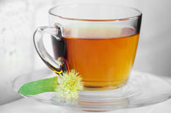 Tea with linden Royalty Free Stock Photos