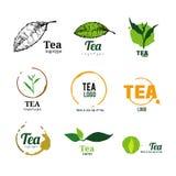 Tea logo illustration Royalty Free Stock Photography