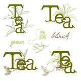 Tea logo Royalty Free Stock Photos