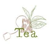 Tea logo Stock Photos