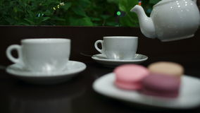 Tea with macaroons in cafe. stock video footage