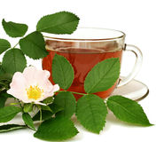 Tea made from dog-rose Stock Images