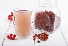 Tea made from dried rowan berries Stock Photography
