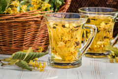 Tea made of lime and honey served in the garden Royalty Free Stock Photo