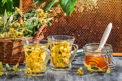 Tea made of lime and honey served in the garden Stock Photography