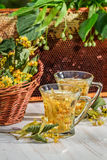 Tea made of lime and honey served in the garden Royalty Free Stock Image
