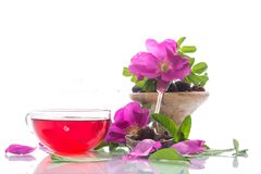Tea made from rose hips with mint Royalty Free Stock Photo