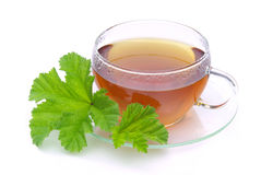 Tea malva. Herbal tea from malva leaves Stock Photo