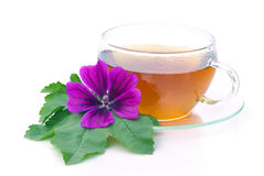 Tea malva. Herbal tea from malva leaves and flowers Stock Images