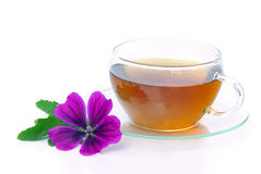 Tea malva. Herbal tea from malva plant Stock Photo