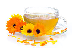 Tea marigold Stock Photo