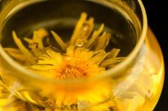 Tea. Marigold blooming tea in transparent pot stock photos