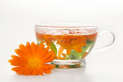 Tea from marigold medical. Royalty Free Stock Images
