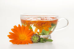 Tea from marigold medical. Stock Photo