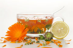 Tea from marigold medical. Stock Photo