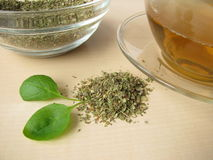 Tea with marjoram Royalty Free Stock Photo