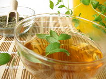 Tea with marjoram Stock Photo