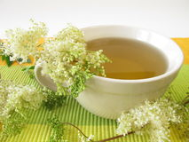 Tea with meadowsweet. And fresh herbs Royalty Free Stock Photography
