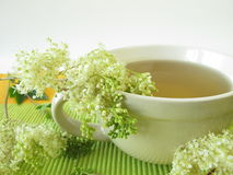 Tea with meadowsweet. And fresh herbs Royalty Free Stock Photo
