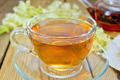 Tea from meadowsweet in glass cup and teapot Stock Photography