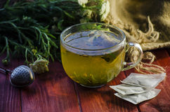 Tea with medicinal herbs Stock Images