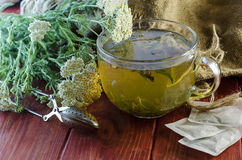 Tea with medicinal herbs Royalty Free Stock Photo