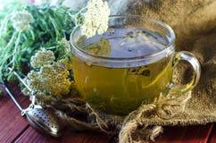 Tea with medicinal herbs Stock Photos