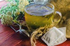 Tea with medicinal herbs Stock Image