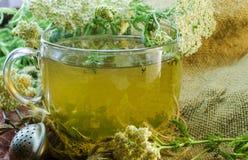 Tea with medicinal herbs Stock Photography