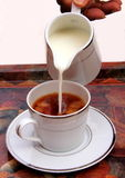 Tea with Milk Stock Images