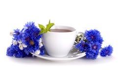 Tea with mint Royalty Free Stock Photos