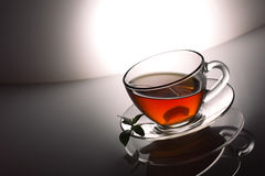 Tea and mint Royalty Free Stock Image