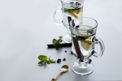 Tea with mint, cinnamon and lemon Stock Image