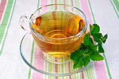 Tea with mint in cup on napkin Royalty Free Stock Photography