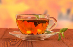 Tea mint in glass cup Stock Images