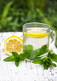 Tea with mint and lemon. A cup of tea with mint and lemon Stock Images