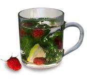 Tea mint Lemon raspberry Stock Photography