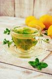 Tea with mint and lemon. Selective focus Stock Photos