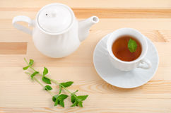 Tea and mint plant Stock Photography