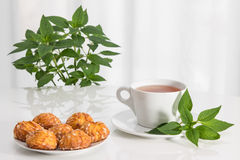 Tea, mint and tasty cookies Stock Photo