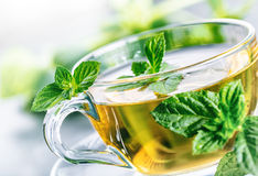 Tea. Mint Tea. Herbal tea. Mint leaf. Mint leaves. Tea in a glass cup, mint leaves, dried tea, sliced lime. herbs tea and mint lea Stock Photography