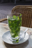 Tea with mint on the white saucer Royalty Free Stock Photo