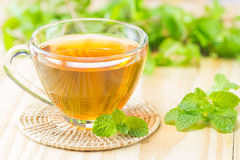 The tea with mint on wood coaster,warm toning, selective focus Stock Photo