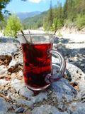 Tea from mountain herbs Royalty Free Stock Photos