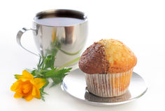 Tea with muffin and a globeflower Stock Image