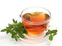 Tea in a mug Royalty Free Stock Photos