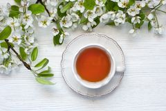 Spring flowers background with tea cup Royalty Free Stock Image