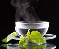 Tea nettle. On the table stock images